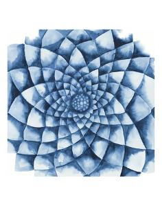 Blue Zinnia by Cathe Hendrick