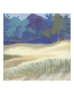 Coastal Dunes I by Cathe Hendrick
