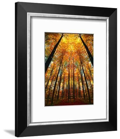 Cathedral Fall-Philippe Sainte-Laudy-Framed Photographic Print
