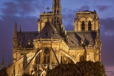 Cathedral Notre Dame, Paris, France-Brian Jannsen-Photographic Print