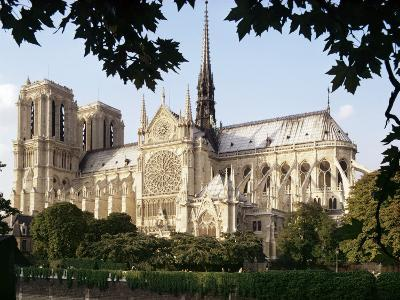 Cathedral of Notre Dame, Paris, France-Adam Woolfitt-Photographic Print