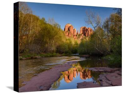 Cathedral Rock Reflection-Michael Blanchette Photography-Stretched Canvas Print