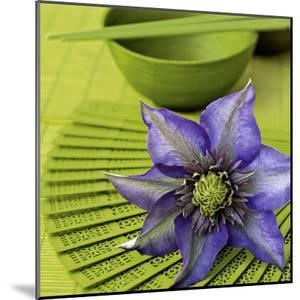 Clematile et Eventail by Catherine Beyler