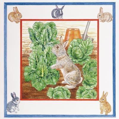 A Rabbit in the Cabbage Patch