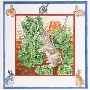 A Rabbit in the Cabbage Patch by Catherine Bradbury