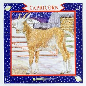 Capricorn by Catherine Bradbury