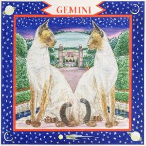 Gemini by Catherine Bradbury