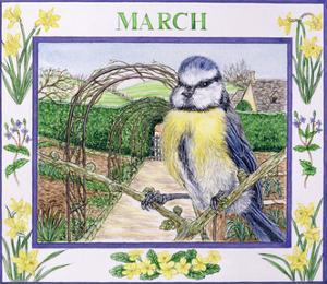 March by Catherine Bradbury