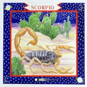 Scorpio by Catherine Bradbury