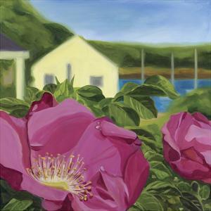 Beach Rose by Catherine Breer