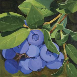 Blueberries by Catherine Breer