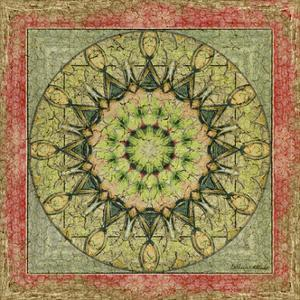 Floress Mandala I by Catherine Kohnke
