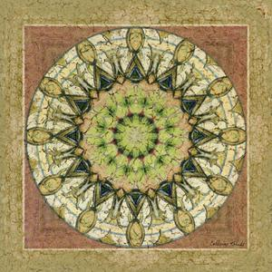 Floress Mandala II by Catherine Kohnke