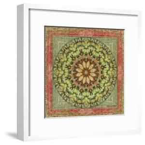 Floress Mandala III by Catherine Kohnke