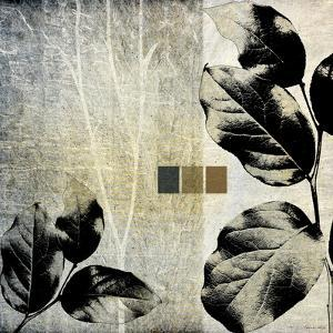 Leaves & Stems II by Catherine Kohnke