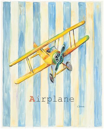 catherine-richards-airplane