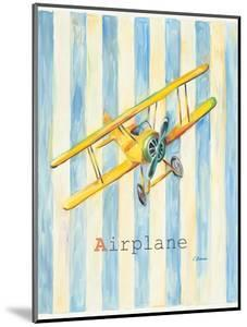 Airplane by Catherine Richards