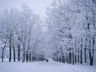Catherine's Park in February, Tsarske Seloe (Puskin), St. Petersburg, Russia-Anthony Waltham-Photographic Print