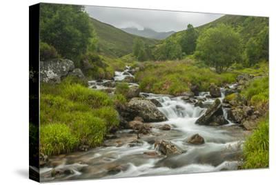 Europe, Scotland, Cairngorm National Park. Mountain Stream Cascade