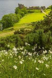 Europe, Scotland, Loch Ness. Landscape of Castle Urquhart Ruins by Cathy & Gordon Illg