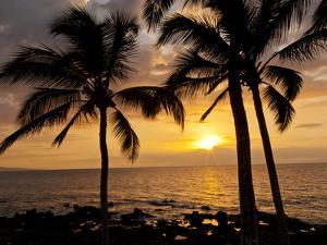 Sunset, Kihei, Maui, Hawaii, USA by Cathy & Gordon Illg