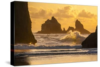 USA, Oregon, Bandon. Shore Scenic