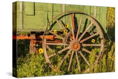 USA, South Dakota, Wild Horse Sanctuary. Close-up of Vintage Wagon