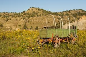 USA, South Dakota, Wild Horse Sanctuary. Scenic with Vintage Wagon by Cathy & Gordon Illg