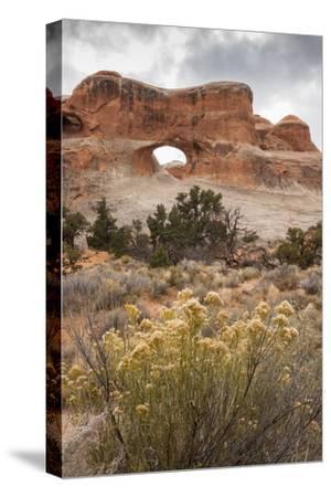 USA, Utah, Arches National Park. Scenic of Tunnel Arch