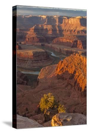USA, Utah, Dead Horse Point State Park. Sunrise on Colorado River