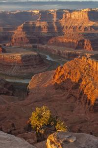 USA, Utah, Dead Horse Point State Park. Sunrise on Colorado River by Cathy & Gordon Illg