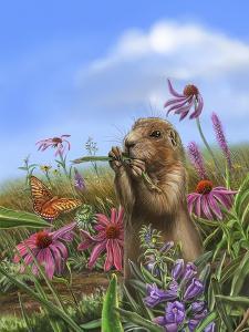 Prairie Pg 3 by Cathy Morrison Illustrates
