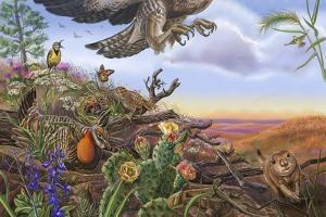 Prairie Spread 14 And 15 by Cathy Morrison Illustrates