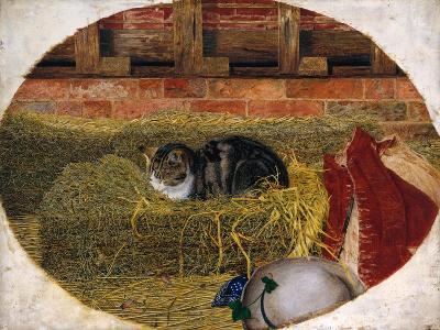 Catnap, 1858-Rosa Brett-Giclee Print