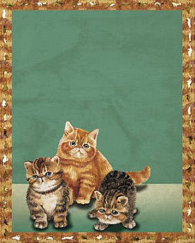 Cats II--Art Print