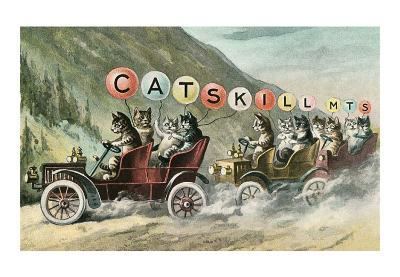 Cats in Cars, Catskill Mountains--Art Print