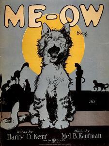 Cats Meow, USA, 1920