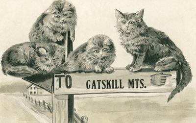 Cats on Catskill Mts. Sign