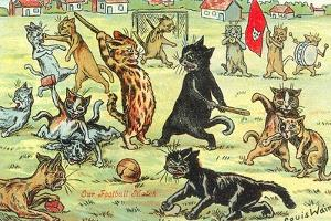 Cats Playing Soccer