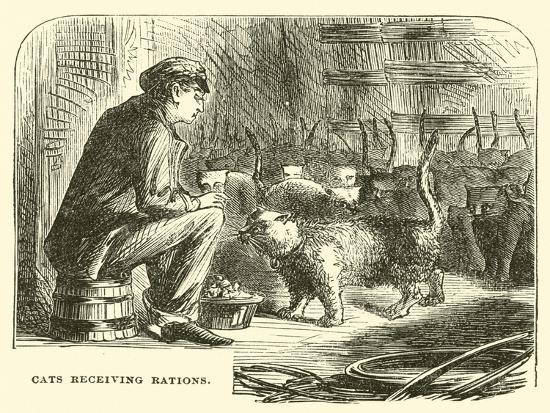 Cats Receiving Rations--Giclee Print