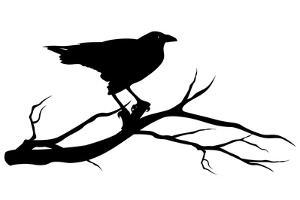 Raven Bird Silhouette by Cattallina