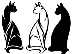 Sitting Cats by Cattallina