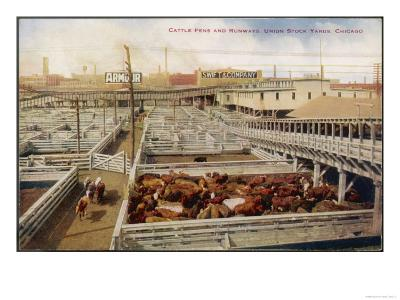 Cattle Awaiting Slaughter in the Union Stock Yards Chicago, Note the Boards for Armour and Swift--Giclee Print