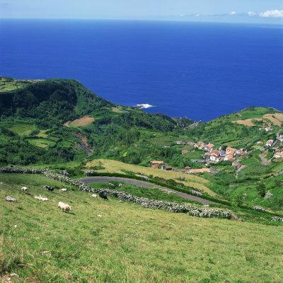 https://imgc.artprintimages.com/img/print/cattle-fields-and-small-village-on-the-island-of-flores-in-the-azores-portugal-atlantic-europe_u-l-p6kufg0.jpg?p=0