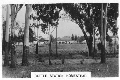 Cattle Station Homestead, Australia, 1928--Giclee Print