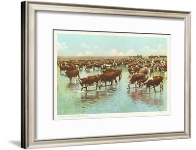 Cattle Watering on the Range--Framed Art Print