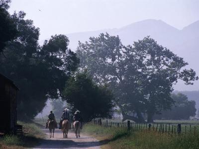 Cattlemen Riding Horses along a Road at Rancho Sisquoc, Santa Barbara, California, USA-Brent Winebrenner-Photographic Print