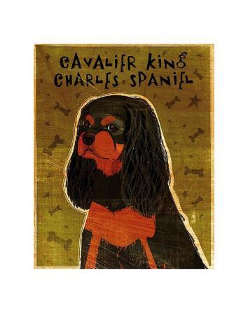 https://imgc.artprintimages.com/img/print/cavalier-king-charles-black-and-tan_u-l-f4ench0.jpg?p=0