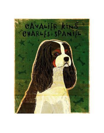 https://imgc.artprintimages.com/img/print/cavalier-king-charles-tri-color_u-l-f4encf0.jpg?p=0