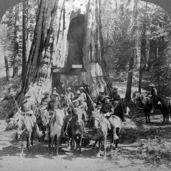 Cavalry Passing Through the Great Tree 'California, California, Usa-Underwood & Underwood-Photographic Print